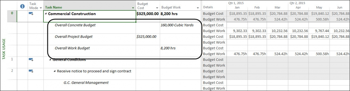 Budget values entered