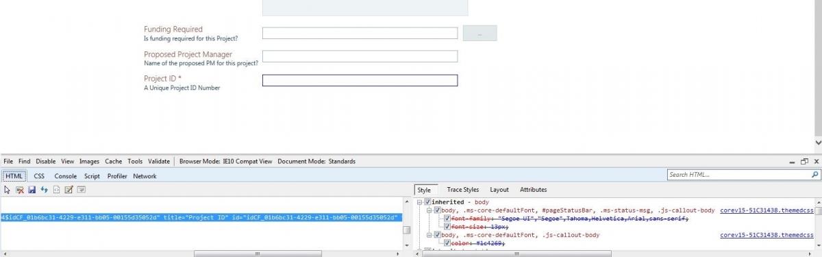 Custom html input